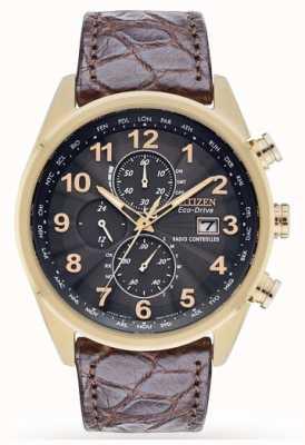 Citizen Limitowana edycja skórzanego paska z chronografem na świecie AT8039-05H