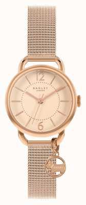 Radley | damska bransoletka z różowego złota | złota tarcza | RY4528