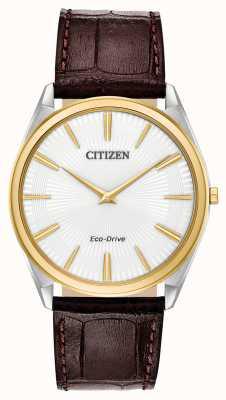 Citizen Stiletto   męski napęd ekologiczny   brązowy skórzany pasek   biała tarcza AR3074-03A